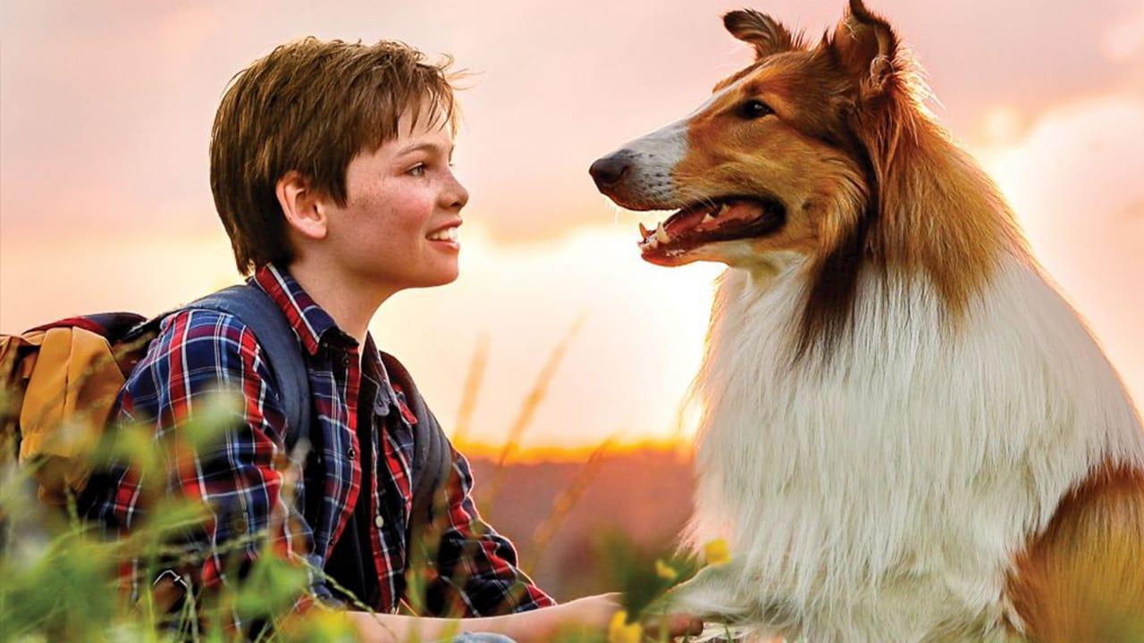 سینمایی 2020 Lassie Eine abenteuerliche Reise
